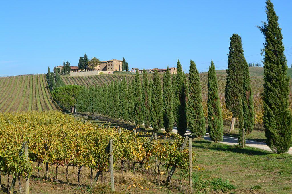 Valle del Chianti